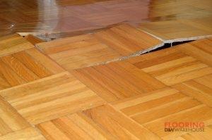 Damage of Wooden Floor Due to Destructive Elements