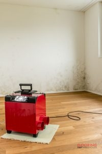 A Red Humidier in an Empty Room with Mold On the Wall.