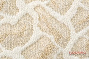 Textured Patterned Carpet